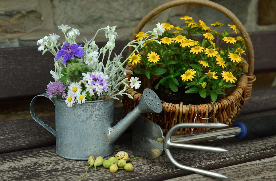 I 5 oggetti che non possono mancarti per un giardinaggio di qualità