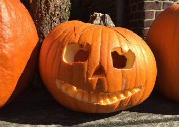zucca-halloween