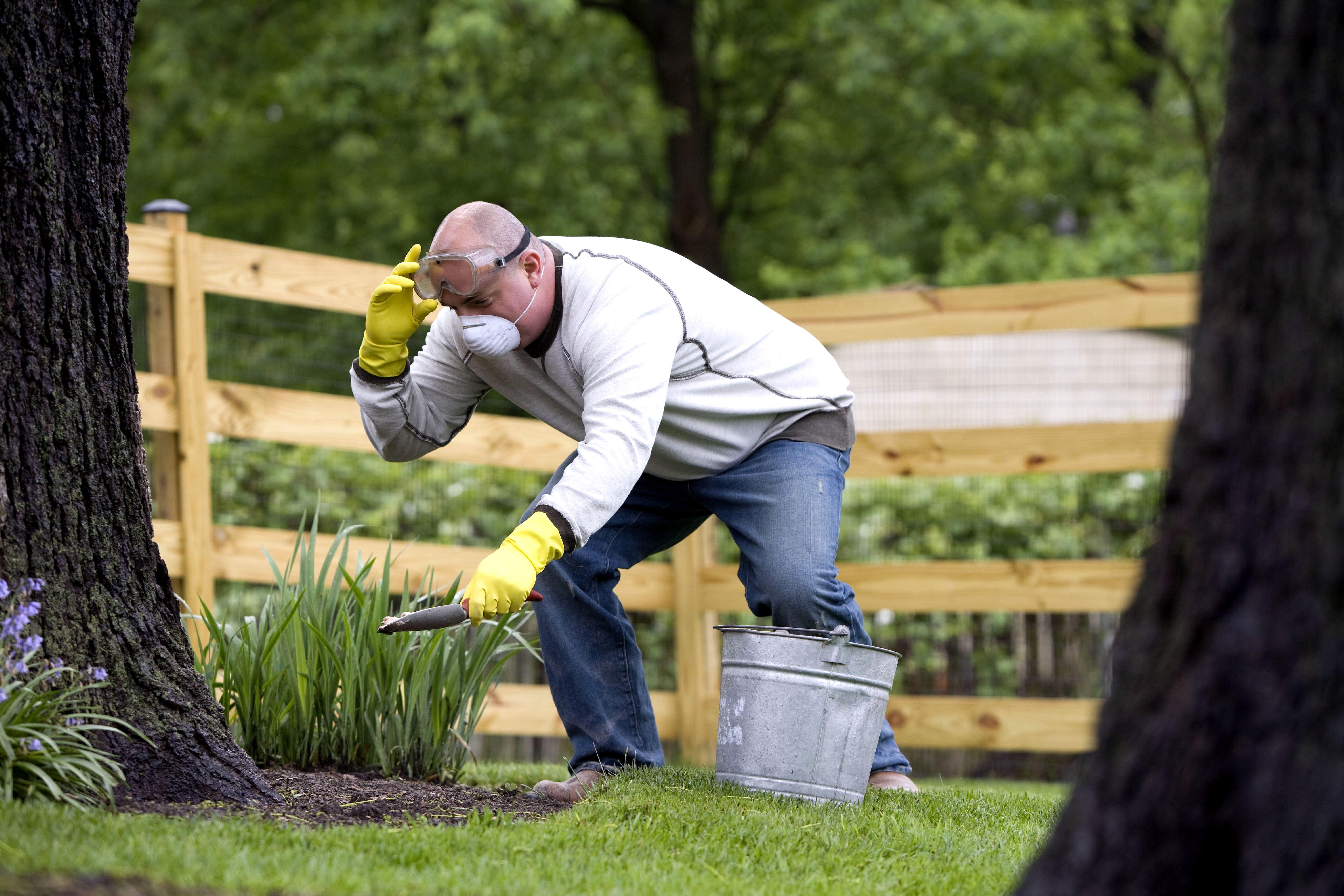 Strumenti da giardinaggio guida alla scelta - Guida giardinaggio ...