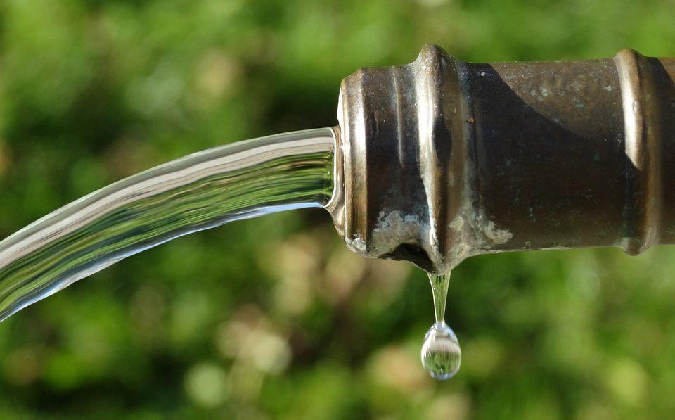 Irrigazione a Goccia fai da te: tutti i passaggi per costruire un impianto