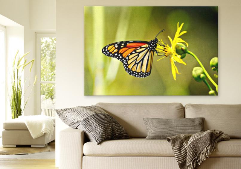 Crea i poster pi belli per decorare le pareti for Poster decorativi per pareti
